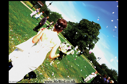 High saturation image of the back of a bride and a bright blue sky and confetti